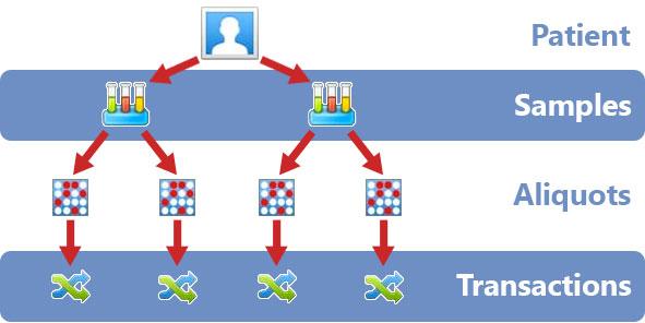images_webpics_summit_structure