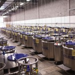 Liquid Nitrogen Freezers line the aisles of the Johns Hopkins University Biorepository