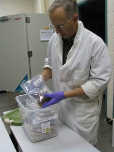 Dr Agnew pulling sealed archived reproductive tissues